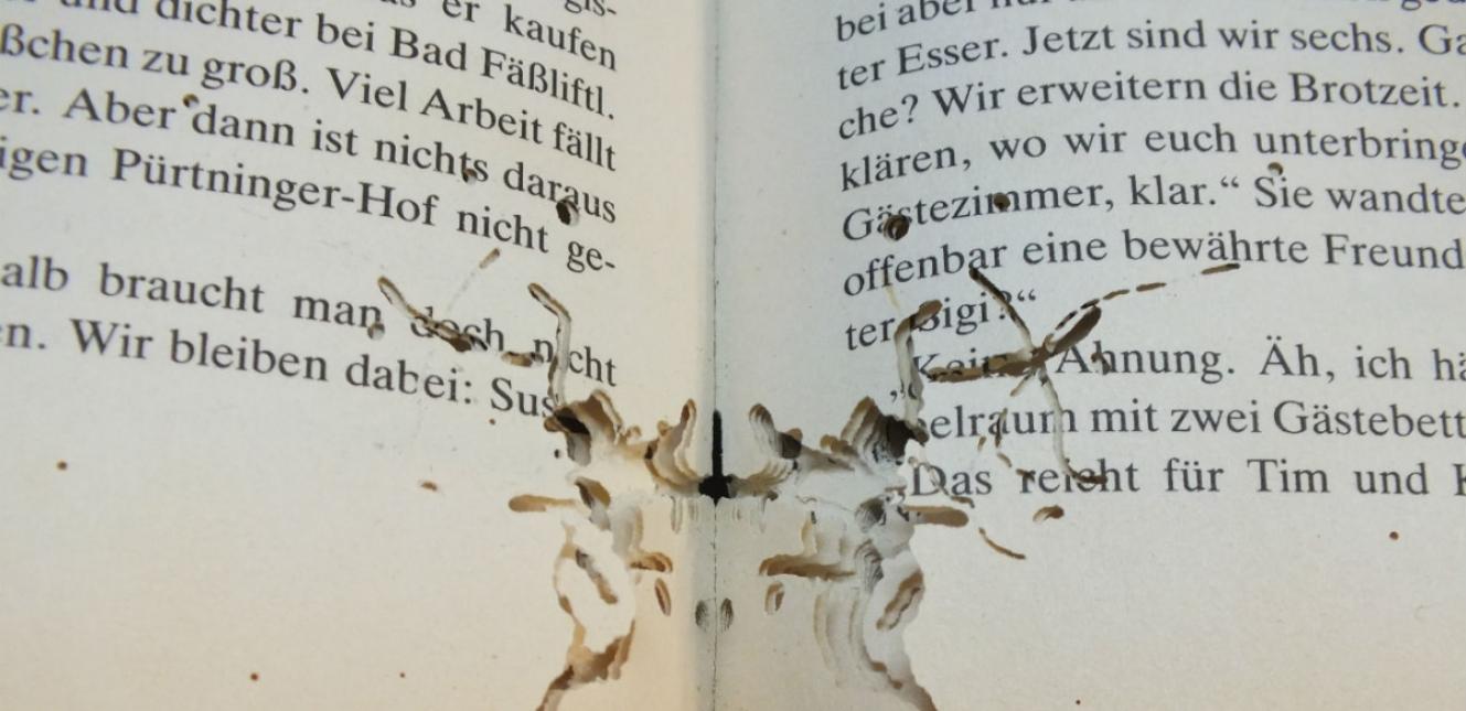 bookworm-damage-cc40